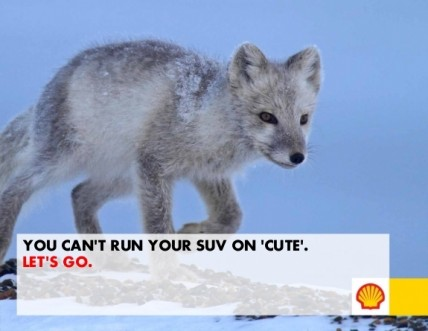 Shell: Let's Go Arctic! 2