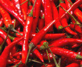 The quest for the world's hottest chilli