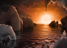 Three earth-sized planets found in habitable zone orbiting single star
