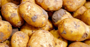 Why the humble potato has strong roots in a healthy lifestyle